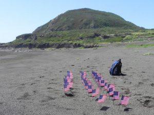 Beach on Iwo Jima with miniature American flags
